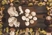 Fotografie Different types of mushrooms on cutting board