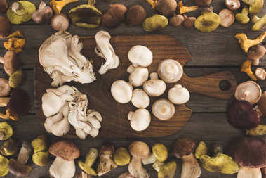 Different types of mushrooms on cutting board