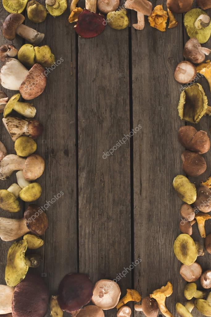 wooden surface with different types of mushrooms