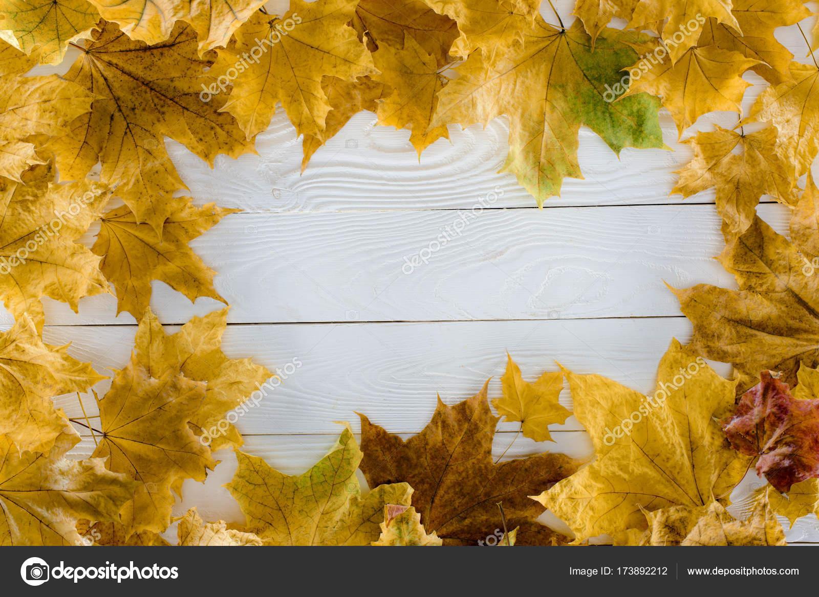 hojas de arce sobre superficie de madera — Foto de stock ...