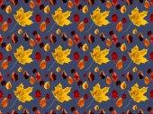 Készlet-ból különböző lehullott levelek