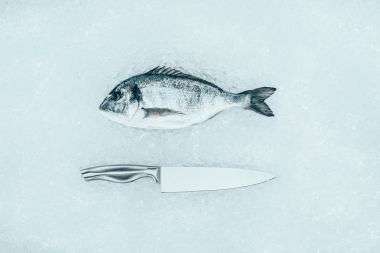 top view of raw dorado fish and knife on ice