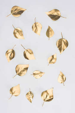 close up view of arranged golden leaves isolated on grey