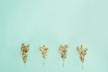 top view of arranged colored golden plants isolated on blue