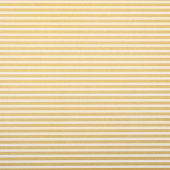Fotografie yellow and white horizontal lines wrapper design
