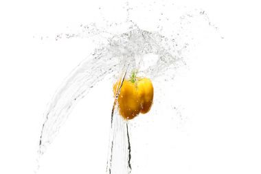 Yellow bell pepper in water splashes isolated on white stock vector