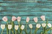 Fotografie řízení kvetoucí tulipány zelené dřevěné pozadí s kopií prostor