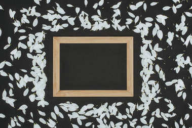 Top view of wooden frame with petals over black background stock vector