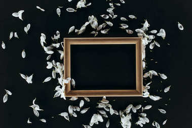 Top view of wooden frame with petals isolated on black stock vector
