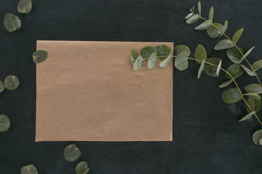 top view of blank paper envelope with eucalyptus branches over black background