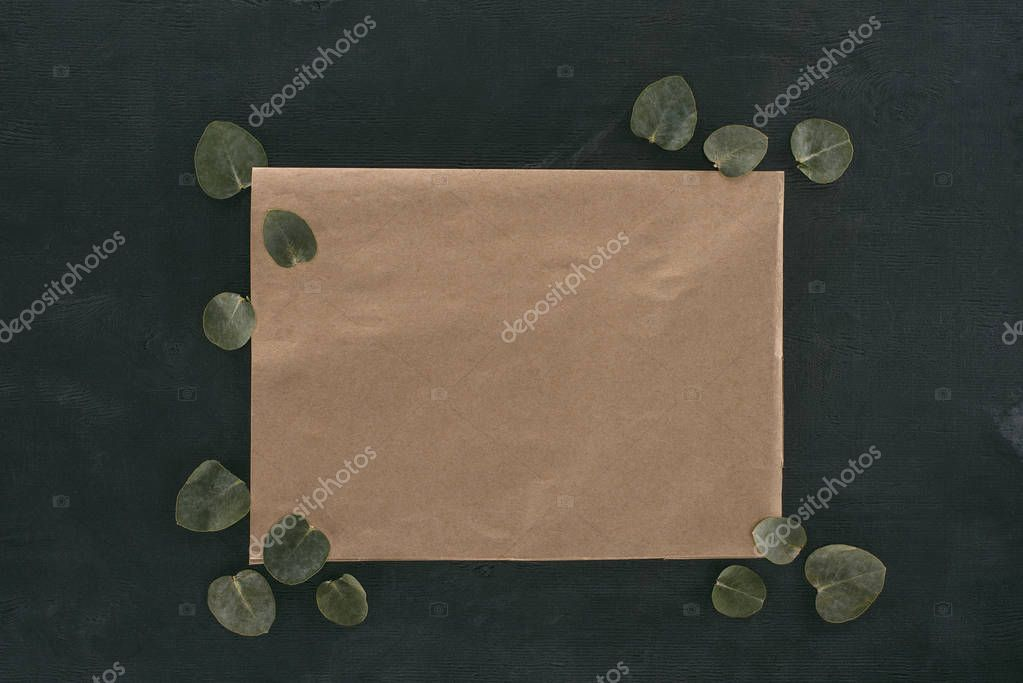 top view of blank paper envelope with eucalyptus leaves over black background