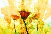 Fotografie zblízka pohled na květy a žluté barvy kovu