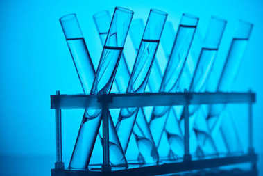 glass tubes with liquid on stand in laboratory on blue