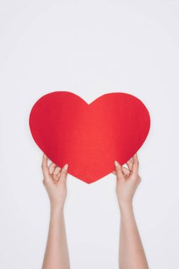 Cropped shot of woman holding red heart isolated on white stock vector