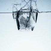 Fotografie Eiswürfel in Wasser mit Spritzen, isoliert auf weiss
