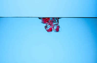 ice cubes with cherries in water, isolated on blue