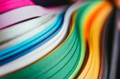 Photo close up of colored bright quilling paper