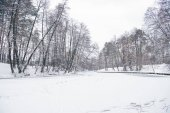 Fotografie Zugefrorener Fluss und Bäume im verschneiten Wald