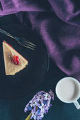 Fotografia vista superiore del pezzo di torta sul piatto e tazza di latte su superficie scura