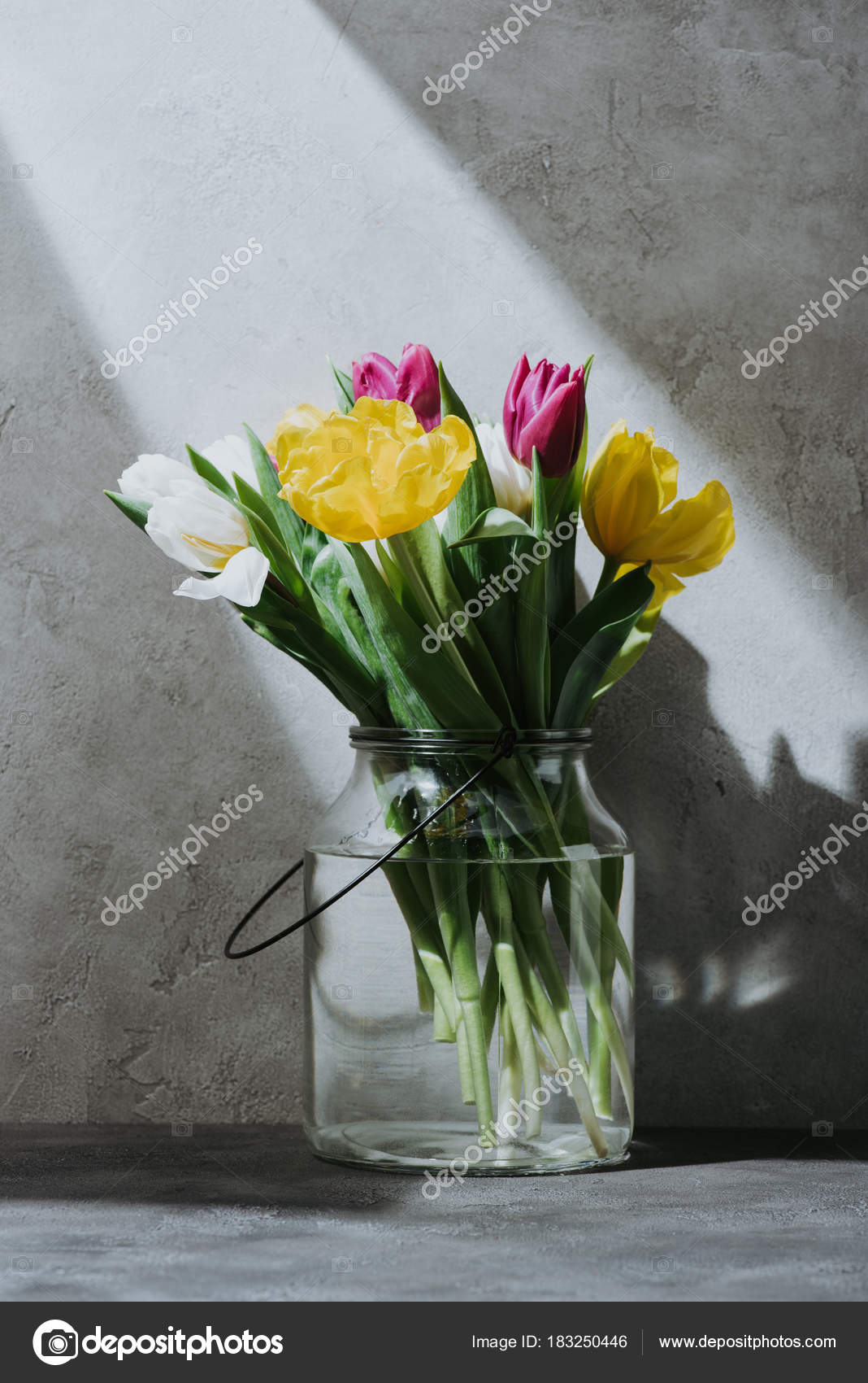 ab2b8bd7b08e0 Spring Tulip Flowers Glass Jar Concrete Surface Shadow — Stock Photo ...