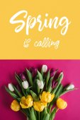 top view of fresh spring tulips with Spring is calling lettering