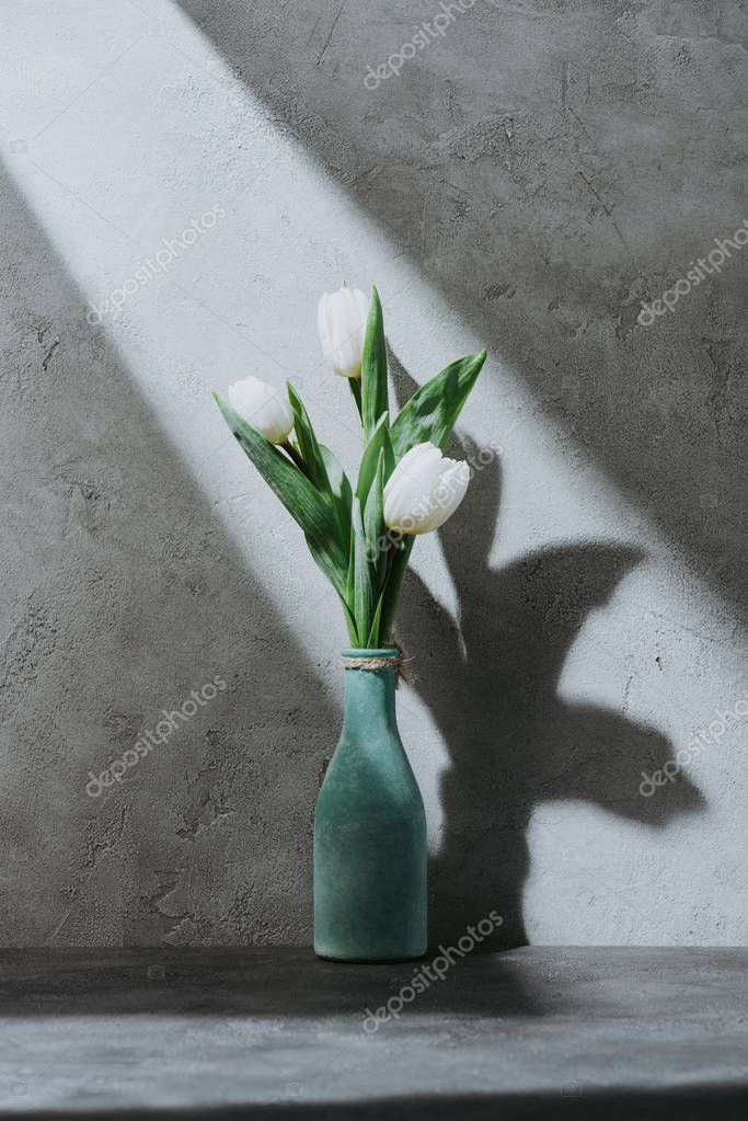 white tulip flowers in blue vase on concrete surface with shadow