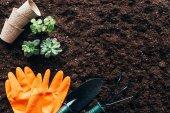 pohled shora zelených rostlin, zahrádkářských potřeb, prázdné hrnce a gumové rukavice na půdě