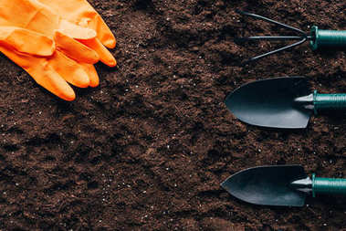top view of orange rubber gloves and small gardening tools on soil