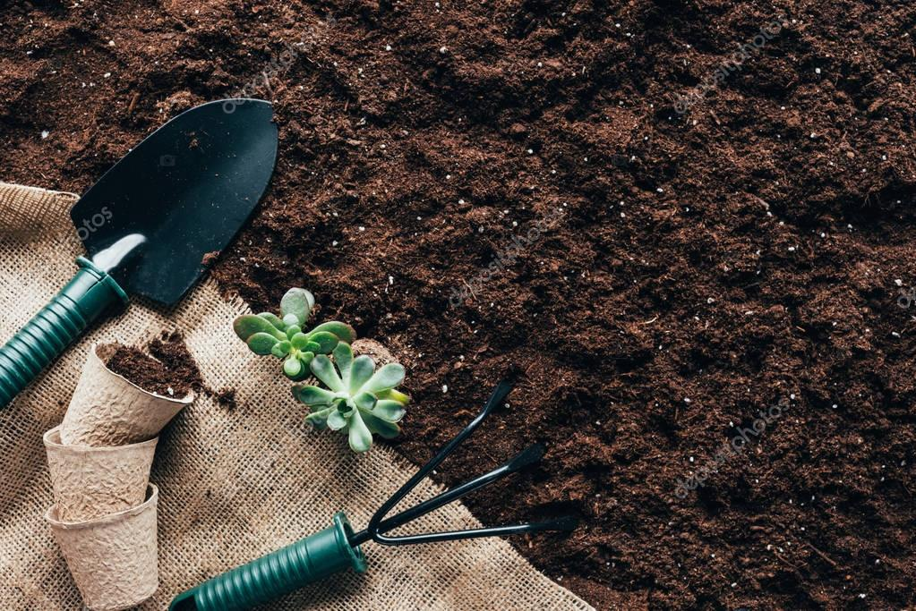 top view of gardening tools, flower pots and green plants on sackcloth on soil