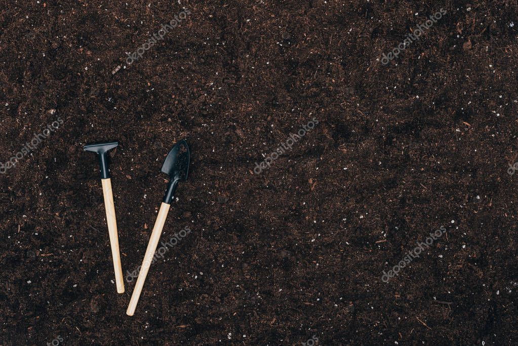 top view of gardening tools on ground with copy space