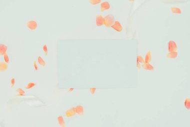top view of beautiful tender rose petals with ribbon and blank card on grey
