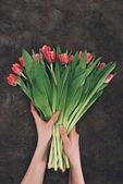 oříznutý snímek držitele krásné růžové tulipány se zelenými listy