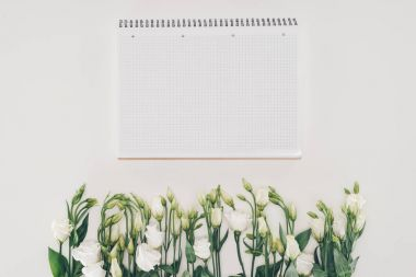 beautiful white flowers and blank notebook on grey