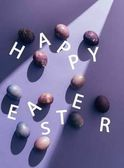 Fotografie Easter purple eggs with happy easter lettering on purple background with sunbeam