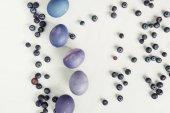 pohled shora borůvky a malovaných fialových velikonoční vejce na šedá