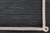 Draufsicht auf arrangierte weiße Meeresseile auf dunkler Holztischplatte