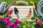 felülnézet, lapát, metszőolló, locsolókanna, Virágcserepek és vízcsapra fű