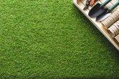 Fotografie pohled shora z květináče a zahrádkářských potřeb na trávě