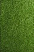 celý rám obrazu pozadí zeleného trávníku