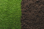 Photo top view of green lawn and soil background
