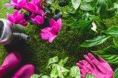 pohled shora konev, ochranné rukavice, květin a holínky