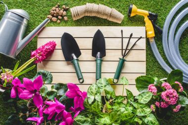 top view of gardening equipment and flowers on grass