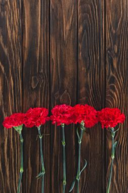 Top view of pile of carnations placed in row on wooden background stock vector