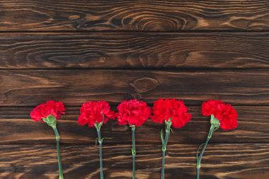 top view of carnations placed in row on wooden background