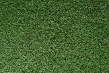top view of field with green grass