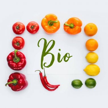 top view of frame of vegetables and fruits with word Bio isolated on white