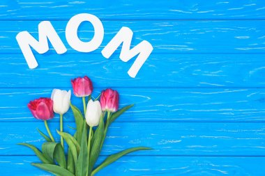 top view of bouquet of pink and white tulips and word mom on blue table, mothers day concept