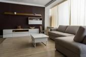 Fotografie Interiér pokoje světle šedá pohovka a stolek