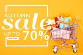 Ansicht des Warenkorbs mit Geschenken auf leuchtend orangefarbenem Hintergrund mit Herbstschlussverkauf, bis zu 70 Prozent Illustration