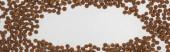 top view száraz kisállat élelmiszer elszórva fehér fénymásoló hely, panoráma lövés
